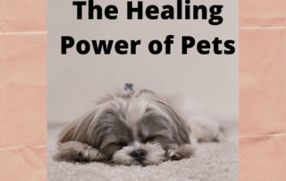 How Dogs Can Help with Anxiety